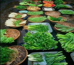 روشهای نگهداری مواد غذایی ، اصول نگهداری مواد غذایی