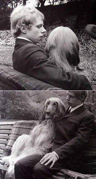 عکسهای جالب و بامزه, عکس طنز