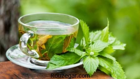 خواص چای سبز, چای سبز,