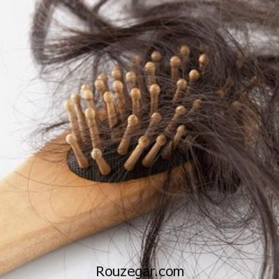 چرا ریزش مو در تابستان بیشتر می شود؟