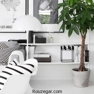 دکوراسیون خانه با رنگ سیاه و سفید