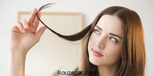 جوش شیرین و تأثیر مثبت آن روی سلامت مو،درمان ریزش مو با جوش شیرین،خواص جوش شیرین برای صورت،فواید جوش شیرین برای مو،جوش شیرین برای موهای چرب،ریختن جوش شیرین در شامپو،شامپو جوش شیرین،عوارض جوش شیرین برای دندان،فواید جوش شیرین برای واژن