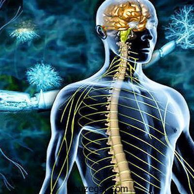 برای مبارزه با بیماری ام اس چه باید کرد؟