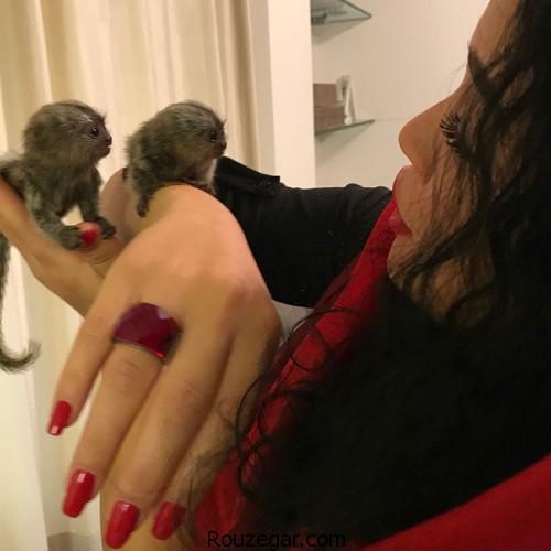 ملیکا شریفی نیا از حیوان خانگی اش رونمایی کرد + عکس