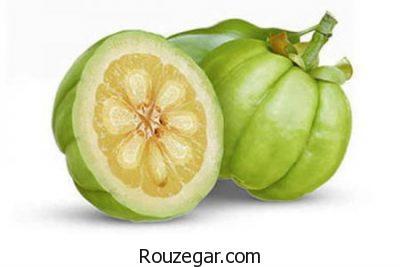 کاهش کلسترول باخواص گارسینیا،تنظیم قند خون باخواص گارسینیا،افزایش انرژی با خواص گارسینیا