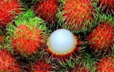 کاهش کلسترول باخواص رامبوتان،درمان برفک با خواص رامبوتان،از بین بردنکرم با خواص رامبوتان