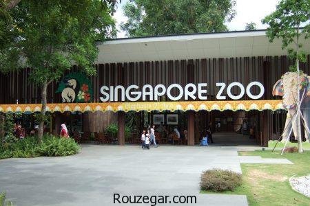 عکس باغ وحش،  عجیب ترین باغ وحش های دنیا