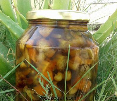 روش تهیه ترشی قارچ , طرز تهیه ترشی قارچ , آموزش درست کردن انواع ترشی قارچ