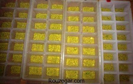 حلوای زنجبیلی,طرز تهیه حلوای زنجبیلی گردویی,آموزش حلوای زنجبیلی مجلسی