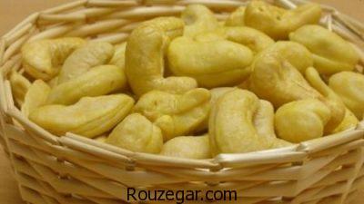 خواص بادام هندی در بدنسازی،خواص بادام هندی در طب سنتی،خواص بادام هندی در لاغری