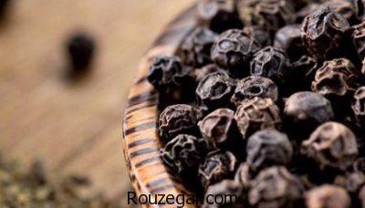 خواص فلفل سیاه,خواص فلفل سیاه در طب سنتی,خواص فلفل سیاه برای پوست,خواص فلفل سیاه برای مو,خواص فلفل سیاه در بارداری,خواص فلفل سیاه برای لاغری