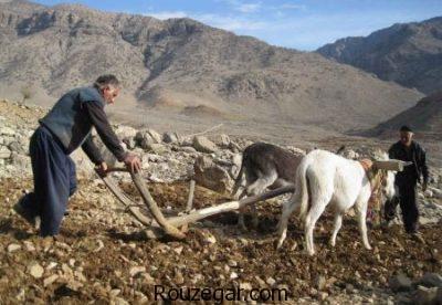 عکس عشایر، عکس عشایر ایرانی