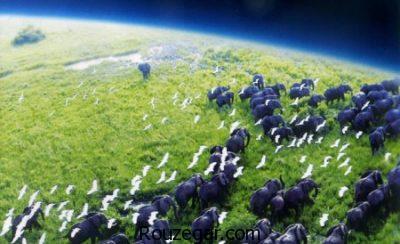 عکس های سیاره زمین،عکس های سیاره زمین واقعی