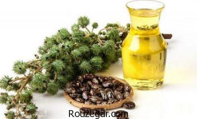 خواص روغن کرچک خوراکی،خواص روغن کرچک برای صورت،خواص روغن کرچک طب سنتی