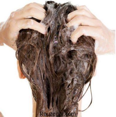 صحیح شستن موی سر، روش شستن موی سر