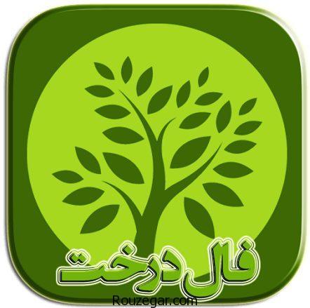 طالع بینی میوه ها,فال درخت,فال درخت روز تولد,طالع بینی میوه ها,فال درخت و میوه,فال درخت هر ماه