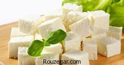 خواص پنیر برای کبد،خواص پنیر برای پوست،خواص پنیر برای کودکان