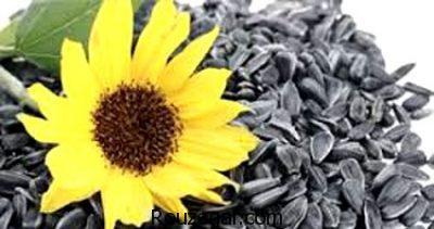 خواص تخمه آفتابگردان در طب سنتی،خواص تخمه آفتابگردان در حاملگی،خواص تخمه آفتابگردان چیست