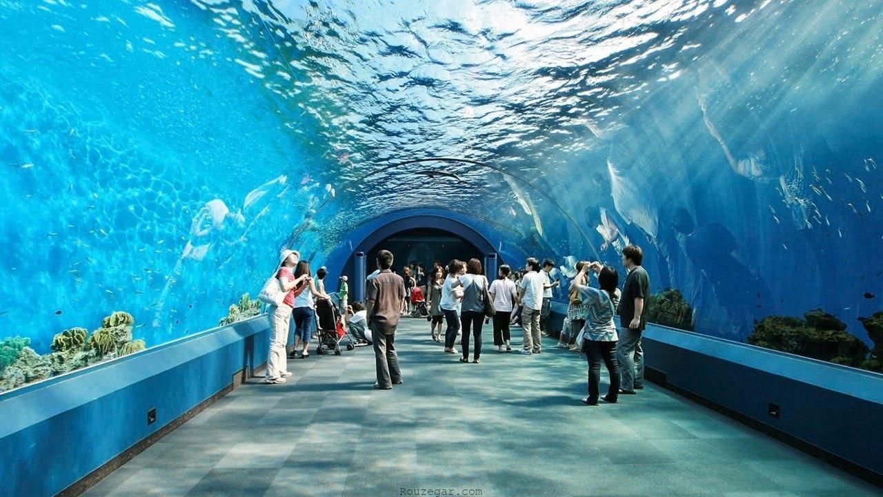 دنیای زیر آب پاتایا ( Pattaya Underwater World)