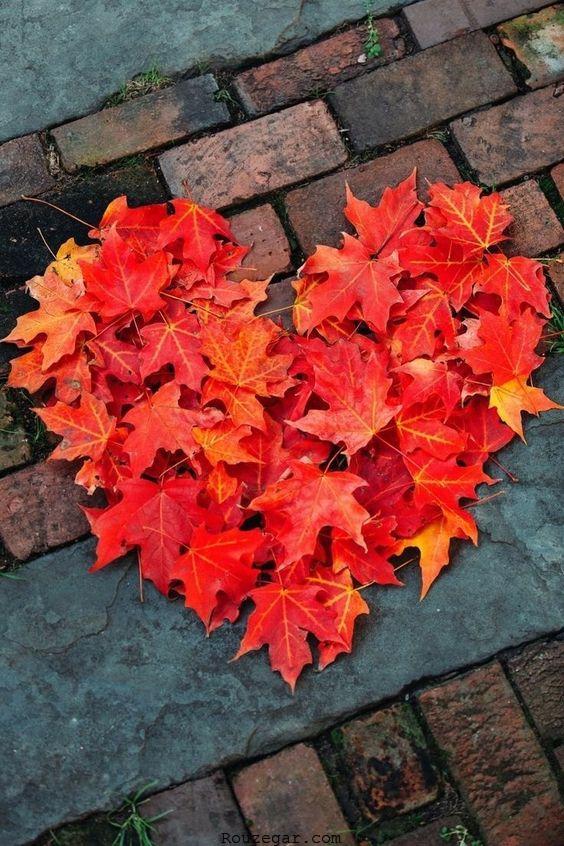 قلب پاییزی