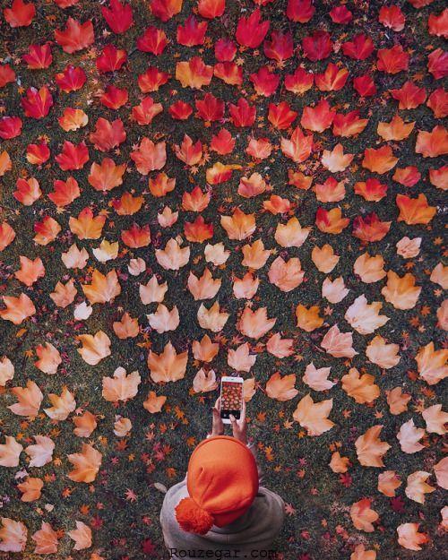 عکس پروفایل برای پاییز
