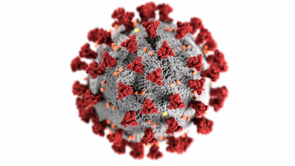 Coronavirus - San Mateo County Health