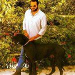 عکس های جدید و دیده نشده حامد کمیلی