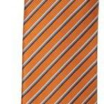 مدل کراوات 2017 + مدل کراوات مردانه 96 + مدل کراوات مجلسی