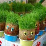 آموزش انواع مدل سبزه عید و طرز تهیه سبزه عید 95