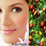 خواص عناب برای پوست و مو و آشنایی با فواید دارویی آن
