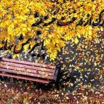 دلنوشته های جدید و جذاب متن دلتنگی پاییزی عاشقانه همراه با عکس