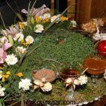 انواع سبزه برای عید 97 و طرز تهیه سبزه کاشت سبزه گندم برای عید نوروز