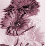 جدیدترین کارت پستال تبریک روز تولد خاص , متحرک و زیبا آنلاین