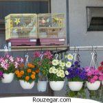 گل های طبیعی برای زیباسازی منزل