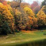 15 آبان جشن میانه پاییز چه روزی است و آشنایی با مراسم جشن میانه پاییز