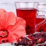 خواص چای ترش در لاغری + خواص چای ترش در بارداری