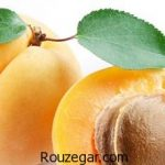 خواص زردآلو برای پوست + خواص زردآلو خشک شده برای زن حامله