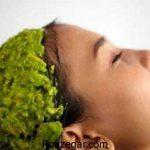 طرز تهیه ماسک مو خانگی و روش استفاده ماسک مو برای مو آسیب دیده