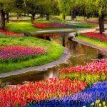 گالری عکس زیباترین عکس باغ ها در ایران و جهان