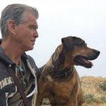 عکس های شخصی پیرس برازنان + بیوگرافی پیرس برازنان Pierce Brosnan