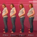 بارداری هفته به هفته دوقلو + بارداری هفته به هفته با تصویر جنین