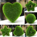 گالری عکس زیباترین سبزه های عید نوروز به همراه آموزس کاشت انواع سبزه