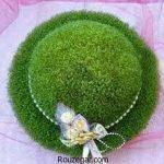 آموزش کاشت سبزه شاهی عید نوروز 98 به همراه عکس های سفره هفت سین