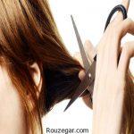 درمان موخوره مو با روش های خانگی